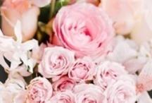 Romantisch & Rozen