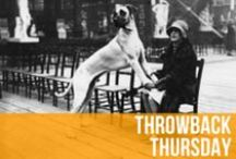 Throwback Thursday / Everybody loves Throwback Thursday. We figured we'd help dogs get in on the action by posting photographs and stories of dogs throwing it back. / by American Kennel Club