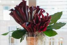 Dark and Sexy (flowers, etc. accents) / deep jewel toned flowers designed by Juniper Flowers in Seattle, WA. also accent pieces and/or artwork by Jean Louise Paquin Allen incorporated with the flowers and/or design