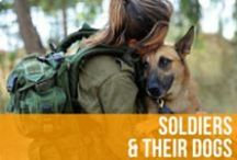 Soldiers & Their Dogs / Our service men and women and the loyal canines who love them. / by American Kennel Club