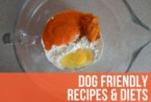 Dog Friendly Recipes & Diets / Helpful information and recipes on foods that keep your best friend healthy, or aide in nursing them back to health. / by American Kennel Club