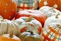 Halloween Festivities / Halloween is coming! It's the most wonderful time of the year…