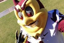 Maroon and Gold Pride / by Arizona State University