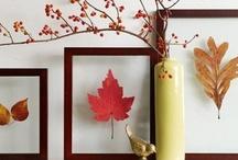 For the Seasons-Autumn