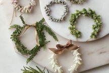 Holidays / by Nicolette Skidmore