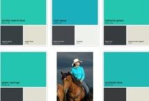 Benjamin Moore Color Capture / by Lucianna Samu Color & Design