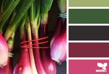 Color / Inspirational Color Palettes for Design Projects / by Neisha Sykes