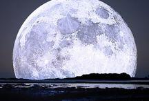 Moon / Serena, romántica y fiel acompañante...