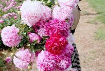 Flowers make me happy / by Shelley Calhoun