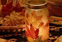 fall / by Katy Resop Benway