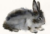 Bunny Hop / Easter