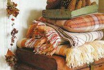 ~ Fabrics ~