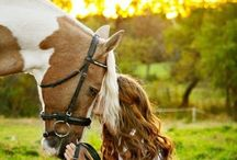 Equestrian Beauty / In praise of the horse... / by Victoria Flores