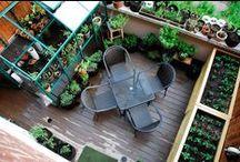 Azoteas verdes y creativas / Convierte la azotea en tu lugar preferido dándole vida con plantas.