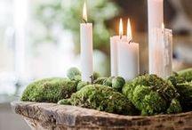 Celebrate -Christmas
