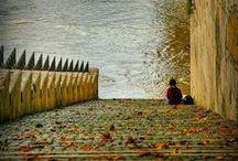 ~ La Seine ~