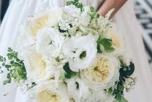 wedding: savannah + henry