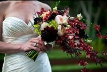 Behind the Veil: Blog Posts from TLW  (Tiger Lily Wedings) / Southern Inspired florals from Charleston, SC www.tigerlilyweddings.com Catch up on our latest blogs!