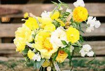wedding colors: yellow