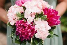 wedding colors: pink