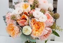 wedding colors: peach