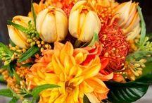 wedding colors: orange