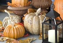 FALL / Ideas for fall, halloween/thanksgiving,