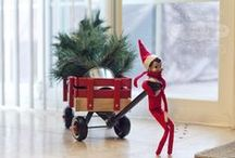 Elf on the Shelf Ideas / by J. Szymborski