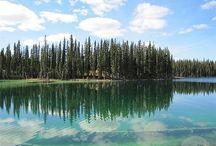 Travel Alaska / by Kara
