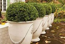 Home: Outdoor Containers / by Worthing Court Blog
