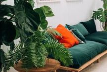a touch of green / SA's most loved decor, design and lifestyle brand celebrating the pleasure of living here now. Visit houseandleisure.co.za for more