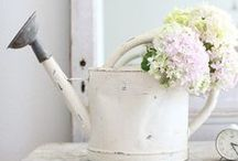 Home & Garden Inspiration / Home & Garden inspiration and decoration Inspirações e decoração de casa & jardim