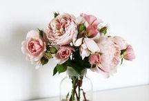 floral / in full bloom