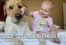We Love Fridays! / Celebrate every Friday with us as we do our Happy Friday dances on Facebook! Visit us at https://www.facebook.com/chippewafallsmainstreet. / by Chippewa Falls Main Street