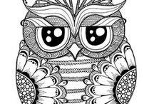 OWL omalovánky