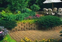 Garden.Backyard / by Lindsey Hurt