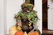 Fall Ideas / by Angie Smith