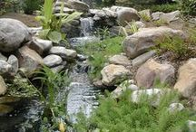 Water Features / Create interest to your landscaping with a pond, waterfall, water garden, water fountain, stream or water feature!