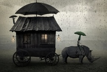 Gypsy Wagons,Campers, Tent / by Richtor Reynolds