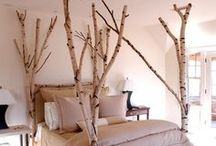 room decoration / by Jimena Gutierrez