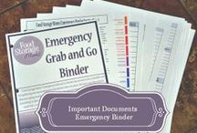 Binder Grab & Go Printables / My personally designed contents for any emergency binder, gather your important documents today... / by Linda @ Food Storage Moms