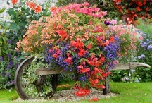 For Your Gardening Pleasure / Garden displays, tips, tricks and ideas! / by Samantha Spidel