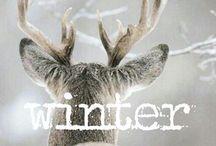 Winter / by Arja van der Pot