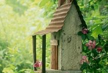 Birds of a Feather / Birdhouses, bird feeders, birdwatching / by Samantha Spidel