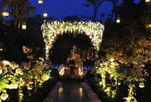 Wedding/Events / by Ayesha Arjmand
