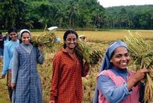 Women in agriculture / by UN Food and Agriculture Organization