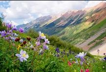 Rocky Mountain High, CO / Home sweet home for many years...