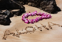 Aloha! / Beautiful place...with amazing cultural, people and sights.  Lived there, been back to visit many times and have family and friends that still live in this amazing paradise.