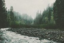 nature meets adventure / by Laurel Folmar