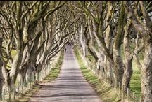 Westeros is Northern Ireland / Experience Game of Thrones® in Northern Ireland with these filming locations.  http://www.discovernorthernireland.com/gameofthrones/